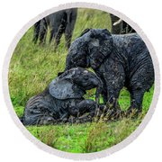 Two Baby Elephants Playing In The Mud Round Beach Towel