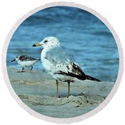 Two By The Sea  Round Beach Towel