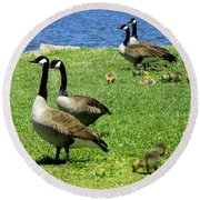 Round Beach Towel featuring the photograph Two By Two  by Sandi OReilly