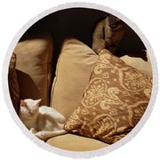 Two Cats Round Beach Towel by John Kolenberg