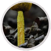 Two Colored Bolete Round Beach Towel by Eric Liller
