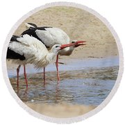 Two Drinking White Storks Round Beach Towel
