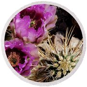 Round Beach Towel featuring the photograph Two Fucshia Blossoms  by Phyllis Denton