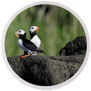 Two Horned Puffins Round Beach Towel