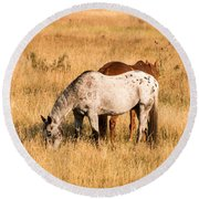 Two Horses Round Beach Towel by Cathy Donohoue