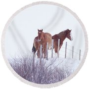 Two Horses In The Snow Round Beach Towel