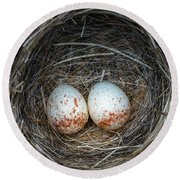 Round Beach Towel featuring the photograph Two Junco Eggs In The Nest by William Lee