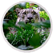 Two Leopards Round Beach Towel
