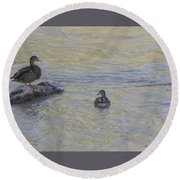 Two Mallard Ducks Round Beach Towel