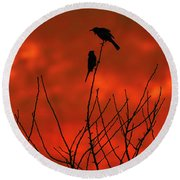 Round Beach Towel featuring the photograph Two On A Twig by Mark Blauhoefer
