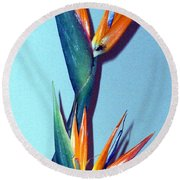 Two Paradises Round Beach Towel by Mindy Newman