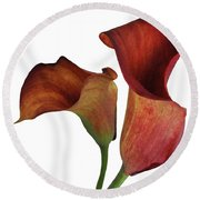 Two Rust Calla Lilies Square Round Beach Towel
