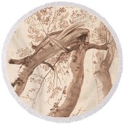 Two Silver Birches, The Front One Fallen Round Beach Towel