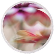 Round Beach Towel featuring the photograph Two Souls 1. Macro Gerbera by Jenny Rainbow