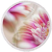 Round Beach Towel featuring the photograph Two Souls. Macro Gerbera by Jenny Rainbow