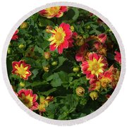 Two Tone Dahlias Round Beach Towel