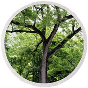 Two Tone Tree Round Beach Towel