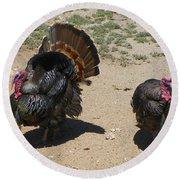 Two Turkeys Round Beach Towel by Joseph Frank Baraba