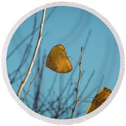Round Beach Towel featuring the photograph Two Warriors  by Ana V Ramirez