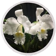 Two White Orchids Round Beach Towel