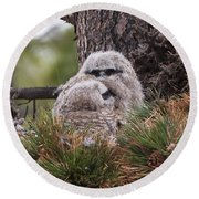 Two Whooo's  Round Beach Towel