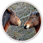 Two Wild Ponies Of Assateague Island National Seashore Round Beach Towel