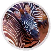 Round Beach Towel featuring the mixed media Two Zebras Playing With Each Other by OLena Art Brand