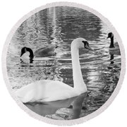 Ugly Duckling Round Beach Towel