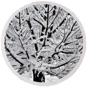 Unbelievable Tree Round Beach Towel