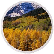 Uncompahgre National Forest Co Usa Round Beach Towel