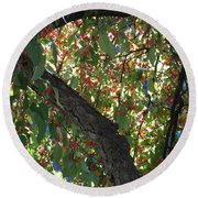 Under The Berry Tree Round Beach Towel by Catherine Gagne