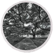 Under The Century Tree - Black And White Round Beach Towel