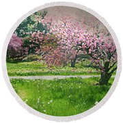 Round Beach Towel featuring the photograph Under The Cherry Tree by Diana Angstadt