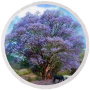 Under The Jacaranda Round Beach Towel