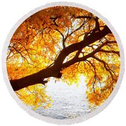 Under The Yellow Tree Round Beach Towel