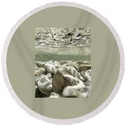 Round Beach Towel featuring the photograph Underwater Adventures by Nikki McInnes