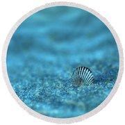 Underwater Seashell - Jersey Shore Round Beach Towel