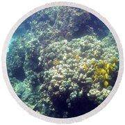 Underwater World 2 Round Beach Towel