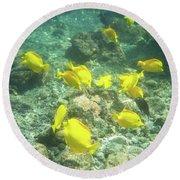 Underwater Yellow Tang Round Beach Towel