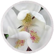 Unfolding Beauty Of Magnolia Round Beach Towel