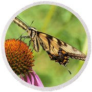 Untitled Butterfly Round Beach Towel