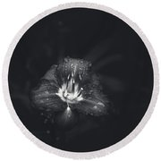Untitled Lily Round Beach Towel