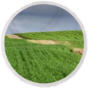 Round Beach Towel featuring the photograph Up And Down On The Way Up by Arik Baltinester