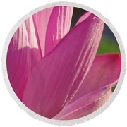 Up Close In Pink Round Beach Towel