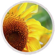 Up Close Sunflower Round Beach Towel
