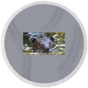 Up Front And Personal Round Beach Towel