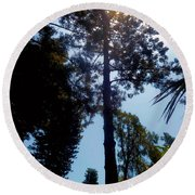 Up In The Sky Trees Round Beach Towel