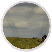 Up On The Hill Round Beach Towel