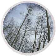 Up Through The Aspens Round Beach Towel by Christin Brodie