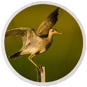 Upland Sandpiper On Steel Post Round Beach Towel